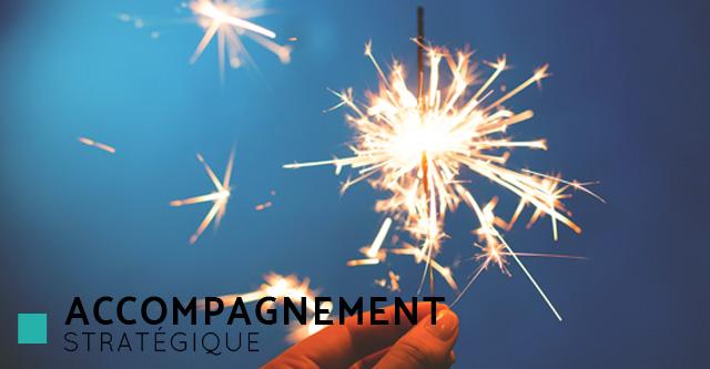 Cyanne freelance expertises - Accompagnement stratégique