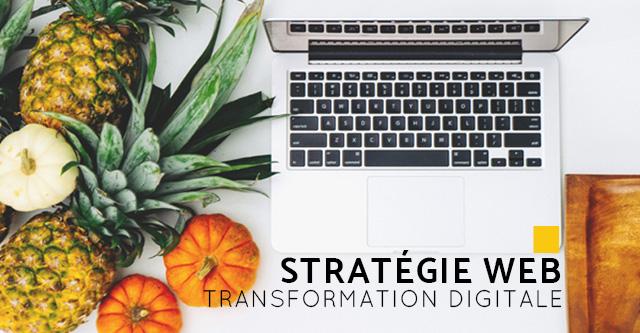 Cyanne freelance expertises - stratégie web
